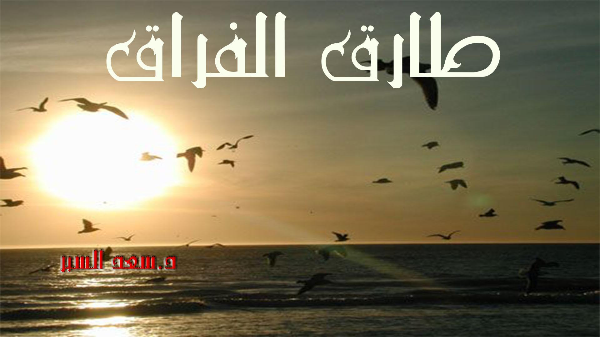 طارق الفراق
