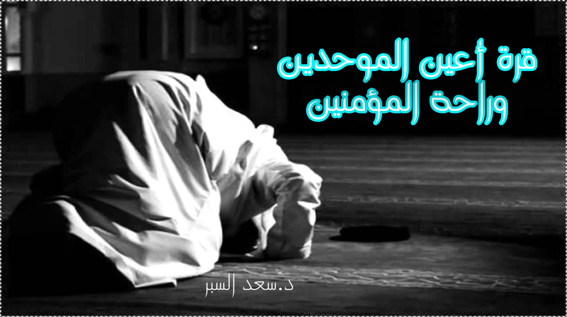 قرة أعين الموحدين وراحة المؤمنين - خطب الجمعة